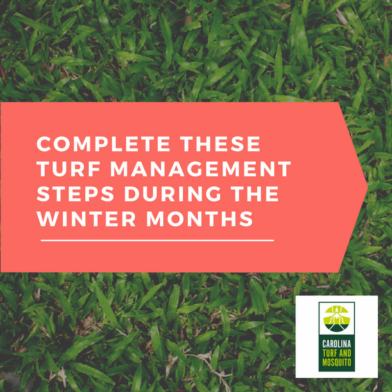 complete-these-turf-management-steps-during-the-winter-months_resized