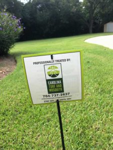 Mosquito Removal in Charlotte, North Carolina