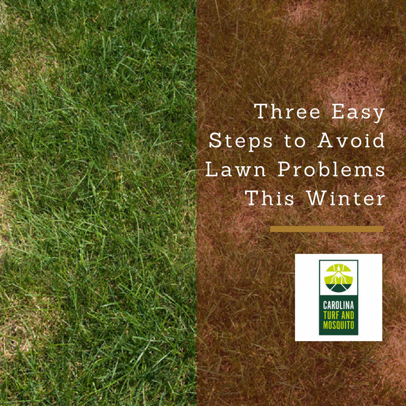 three-easy-steps-to-avoid-lawn-problems-this-winter_resized