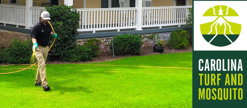 Lawn Maintenance in Waxhaw, North Carolina