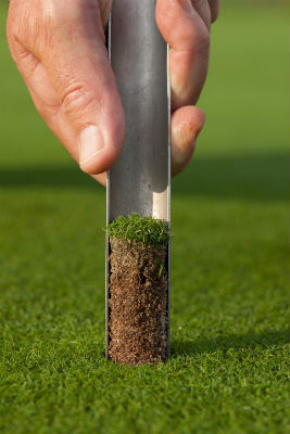 What You Should Know About Soil Sampling for Your Lawn