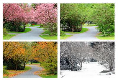 Lawn Care: Season by Season