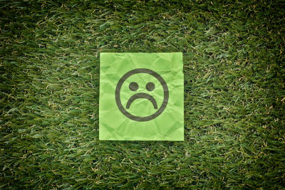 3 Common Lawn Problems and How to Resolve Them