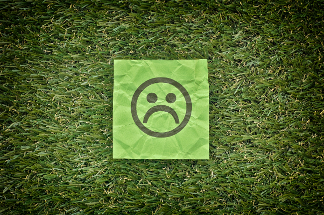 Answers to Common Lawn Problems