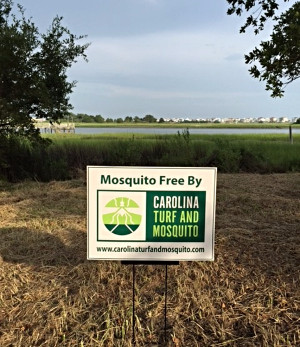 Mosquito Control in Weddington, North Carolina