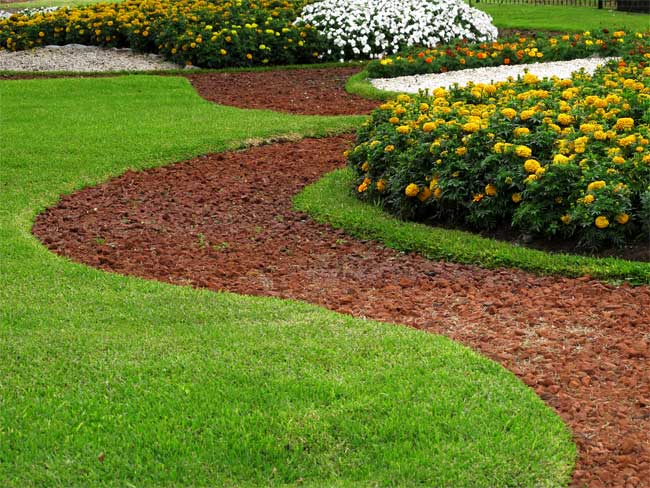 Important Turf Management Tips