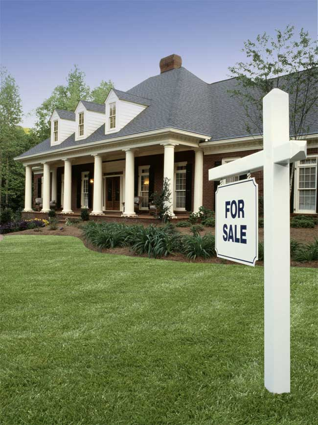 Selling Your Home? Consider Lawn Care Services to Elevate Curb Appeal