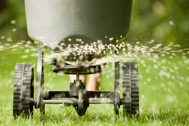 Keep Your Lawn Beautiful With Lawn Fertilization