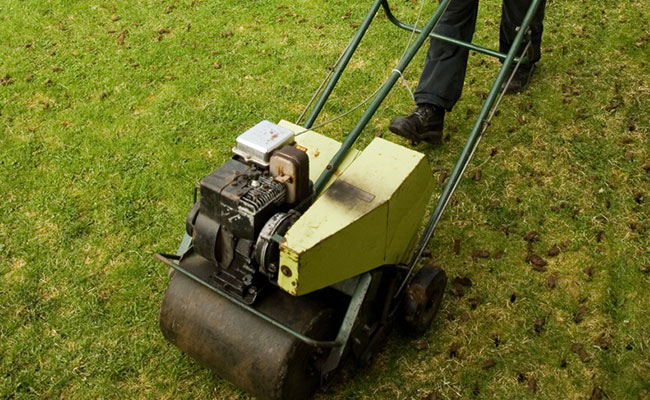 Key Preparations in Turf Management