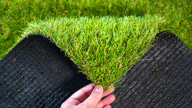 Common Turf Problems and How to Avoid Them