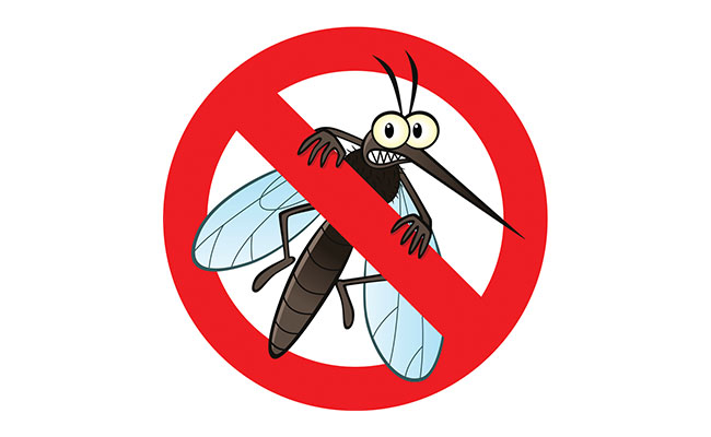 Barrier Sprays Are a Safe and Effective Way to Kill Mosquitos